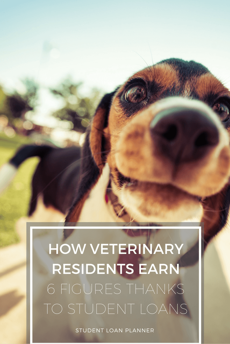 veterinary residents