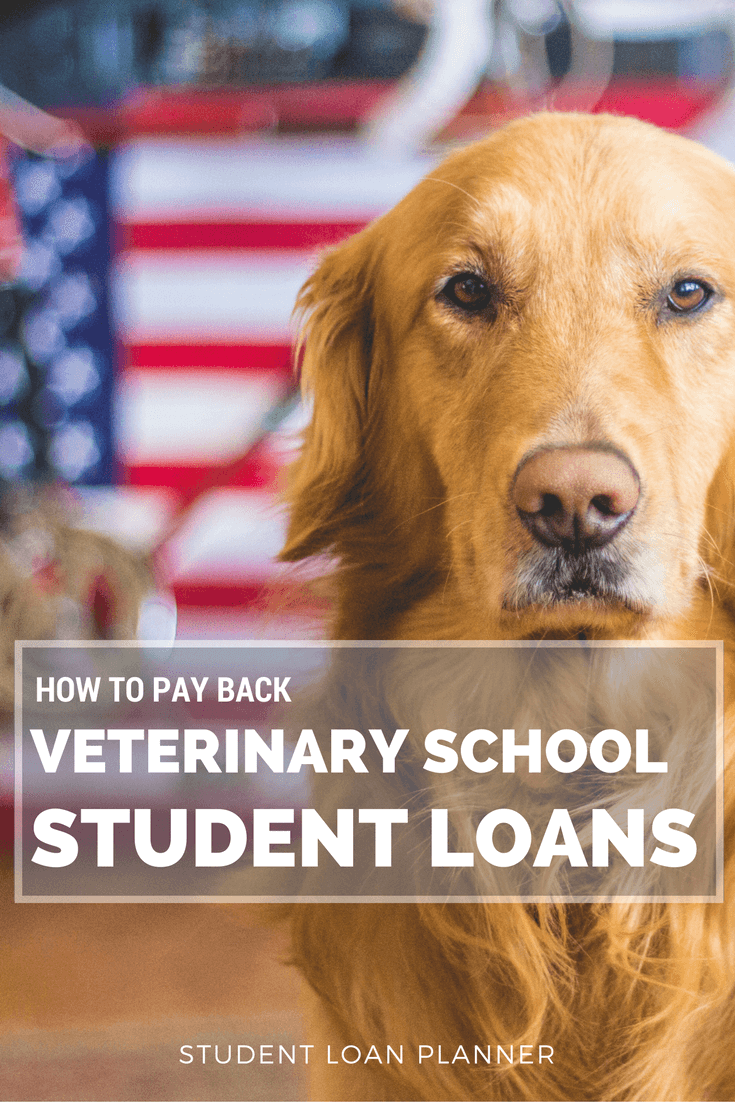 Here are my top tips on how veterinarians can save money repaying their student debt