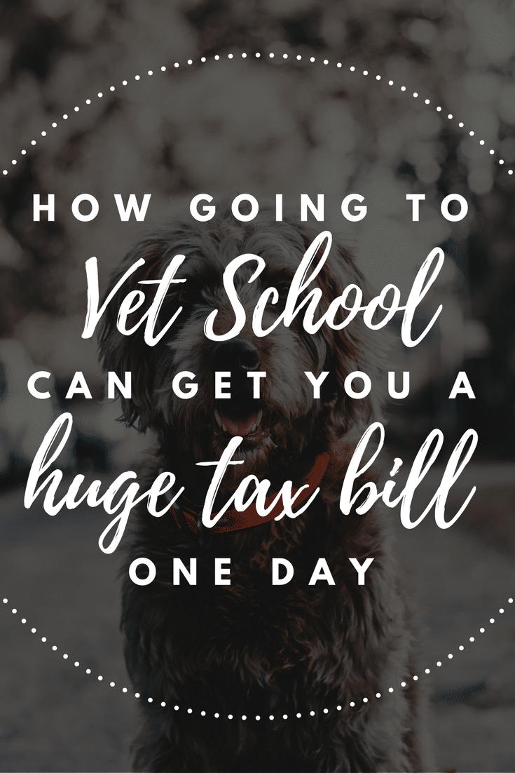 vet school student loan tax bomb student loan planner