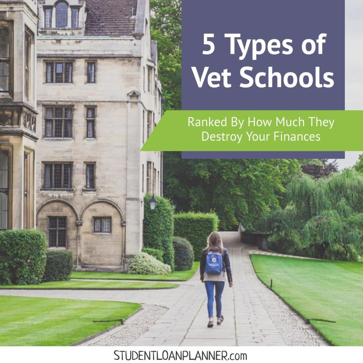 Two #vets went to different schools. One owes $150,000 while the other owes $400,000.Same education, more money.Here are the five types of vet schools ranked by how much they will destroy your finances after graduation.