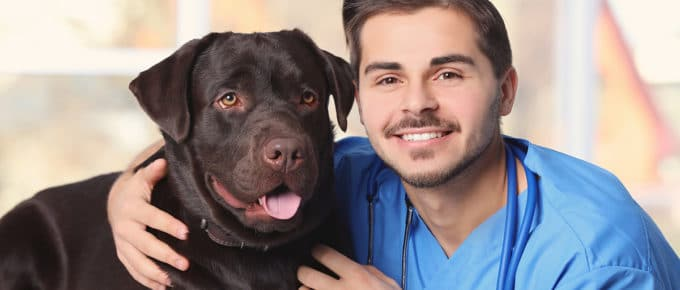young-male-veteriarian-hugging-dog